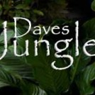 daves-jungle-entertainer