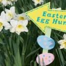 glendeer-farm-easter-egg-hu