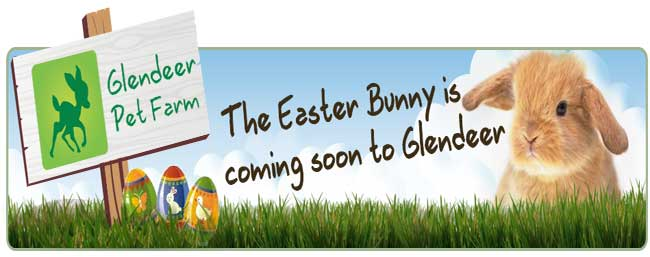 """Easter At Glendeer Pet Farm"""