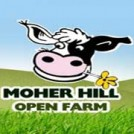 """Easter Family Fun at Moher Hill Open Farm"""