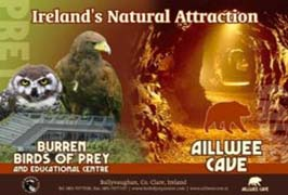 """""""Aillwee Caves in Clare"""""""