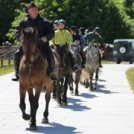 """Dartfield Horse Museum"""
