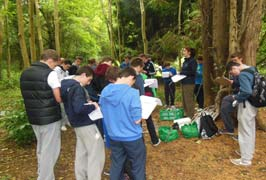 """Castlecomer Discovery Park School Tours"""