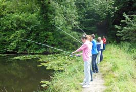 """Castlecomer Discovery Park Family Fishing"""