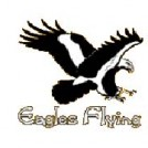 """Eagels Flying Sligo"""