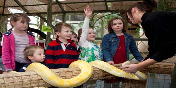 kilkenny-reptile-village-conservation-zoo