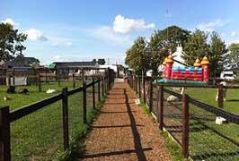 """Clonfert Pet Farm in Kildare"""