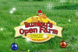 """""""Rumley's Farm Christmas Experience"""""""
