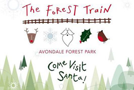 """""""The Forest Train to visit Santa"""""""