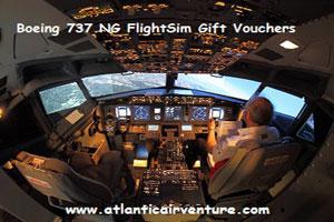"""""""Atlantic AirVentur simulator"""""""