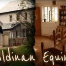 """Kildinan Equine Camps For Kids"""