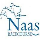 """""""Naas Racecourse Kildare"""""""