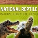 """The National Reptile Zoo"""