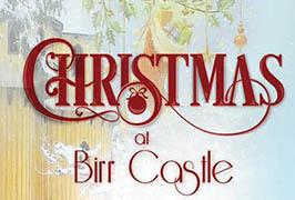 """Birr Christmas Wonderland"""
