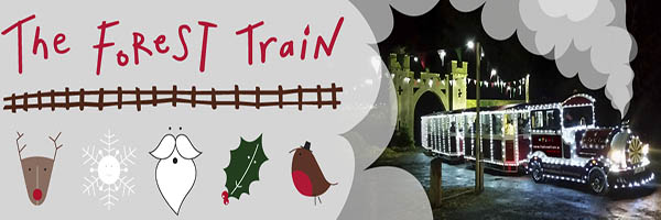 """""""The Forest Train to Santa"""""""