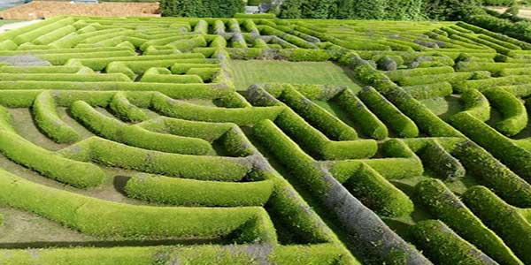 """Kildare Maze"""