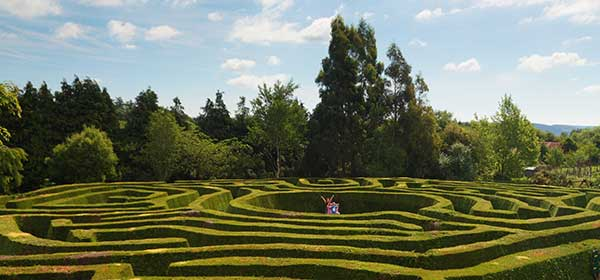 """""""Greenan Maze in Wicklow"""""""