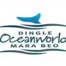 """Dingle Oceanworld Aquarium in Kerry"""