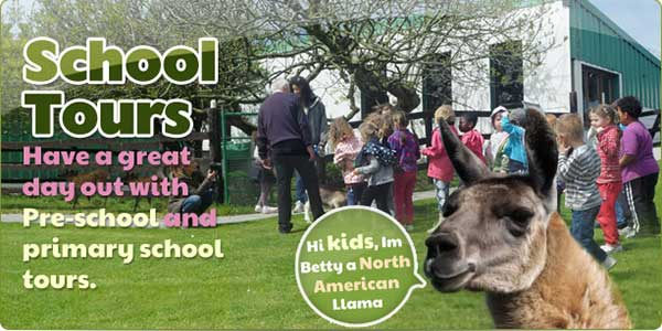 """Moher Hill Open Farm And Leisure Park School Tours"""