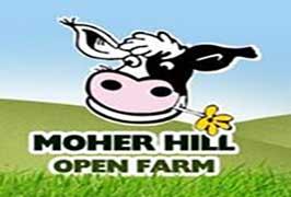 moher-hill-open-farm-clare