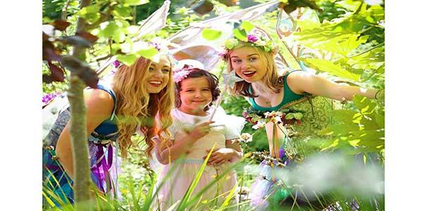 """""""Bord na Móna's Fairy Festival"""""""
