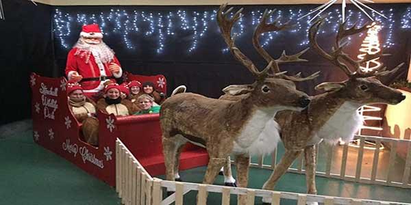 """Santas Grotto At Stonehall Visitor Farm & Wildlife Park"""