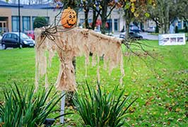 """Radisson Halloween Family Fun"""