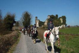 Clonlara Equestrian Centre Horse Riding In Clare