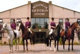 mullingar equestrian resize