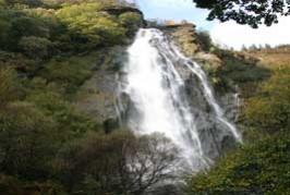 powercourt-waterfall-image