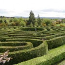 wicklow-greenan-maze R