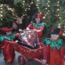 Christmas At Leahys Farm