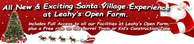 Santa Village Experience at Leahy.s Farm