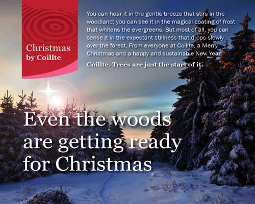 Coillte Christmas Tree Centres