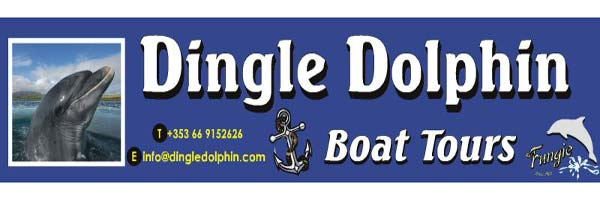 """The Dingle Dolphin Fungie Boat Trips"""