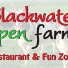 """Blackwater Open Farm and Fun Zone in Wexford"""
