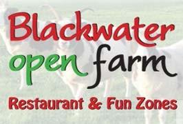 """Blackwater Open Farm and Fun Zone in Wexford"""