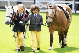 """The Discover Ireland Dublin Horse Show"""