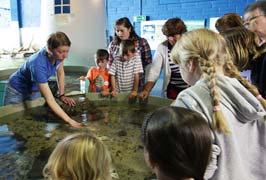 """""""School Tours At The Galway Aquarium"""""""