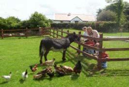 """Greenan Farm Museum And Maze"""