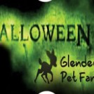 """Halloween Event in Glendeer Pet Farm"