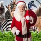 """""""Visit Santa Grotto At Dublin Zoo"""""""