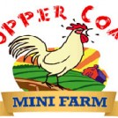 """Copper Coast Mini Farm, Waterford"""