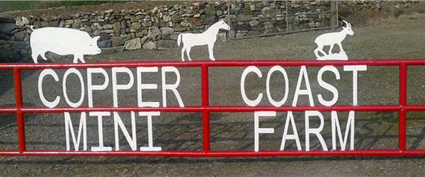 """Copper Coast Mini Pet Farm in Waterford"""