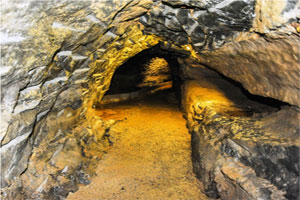 """""""Doolin Cave Online Booking"""""""