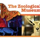 """The Zoological Museum"""