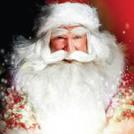 """""""Christmas at Malahide Castle"""""""