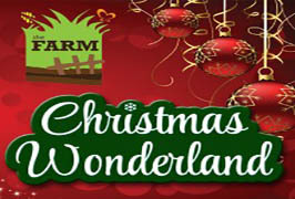"""Christmas Wonderland at The Farm Grenagh"""
