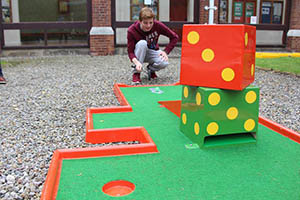 """Portable Crazy Mini Golf Hire"""