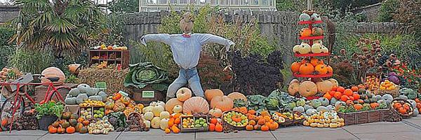 """Halloween at the Botanic Gardens"""